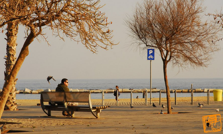 Walks In Barcelona (winter)